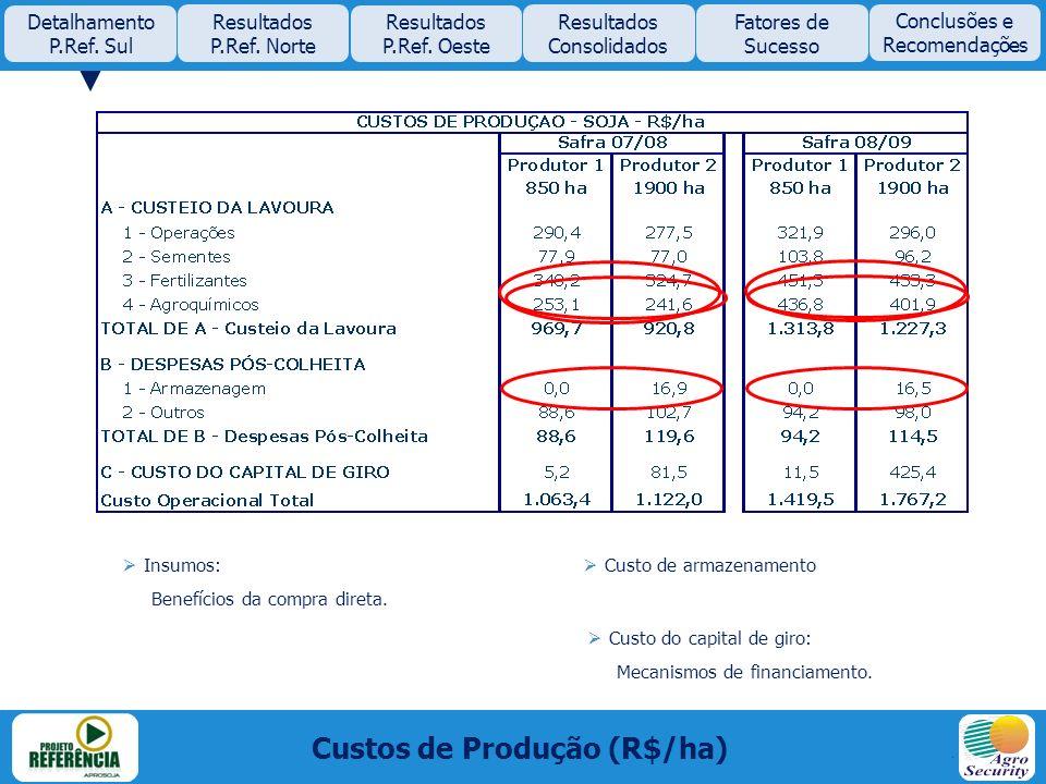 Custos de Produção (R$/ha)