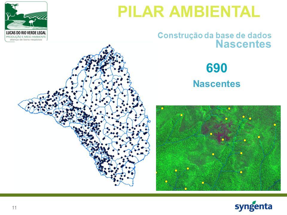 PILAR AMBIENTAL Construção da base de dados Nascentes 690 Nascentes