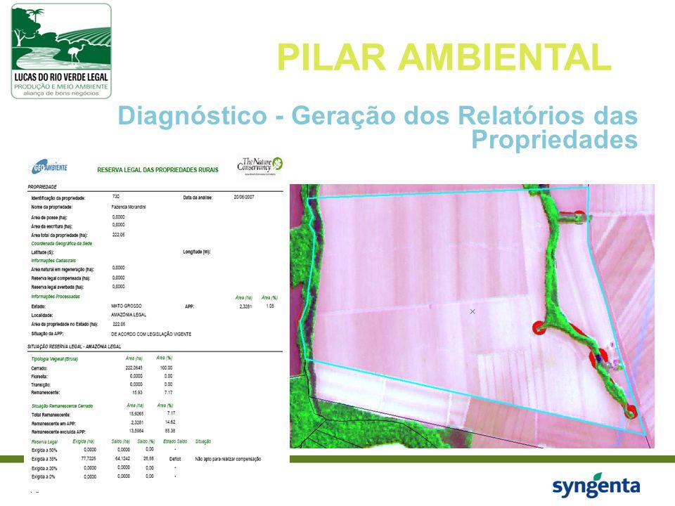 PILAR AMBIENTAL Diagnóstico - Geração dos Relatórios das Propriedades