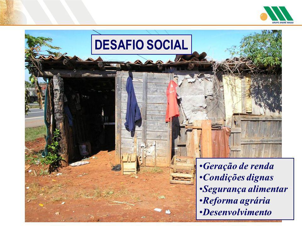 DESAFIO SOCIAL Geração de renda Condições dignas Segurança alimentar