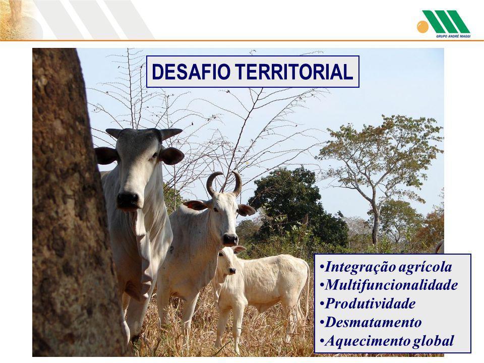 DESAFIO TERRITORIAL Integração agrícola Multifuncionalidade