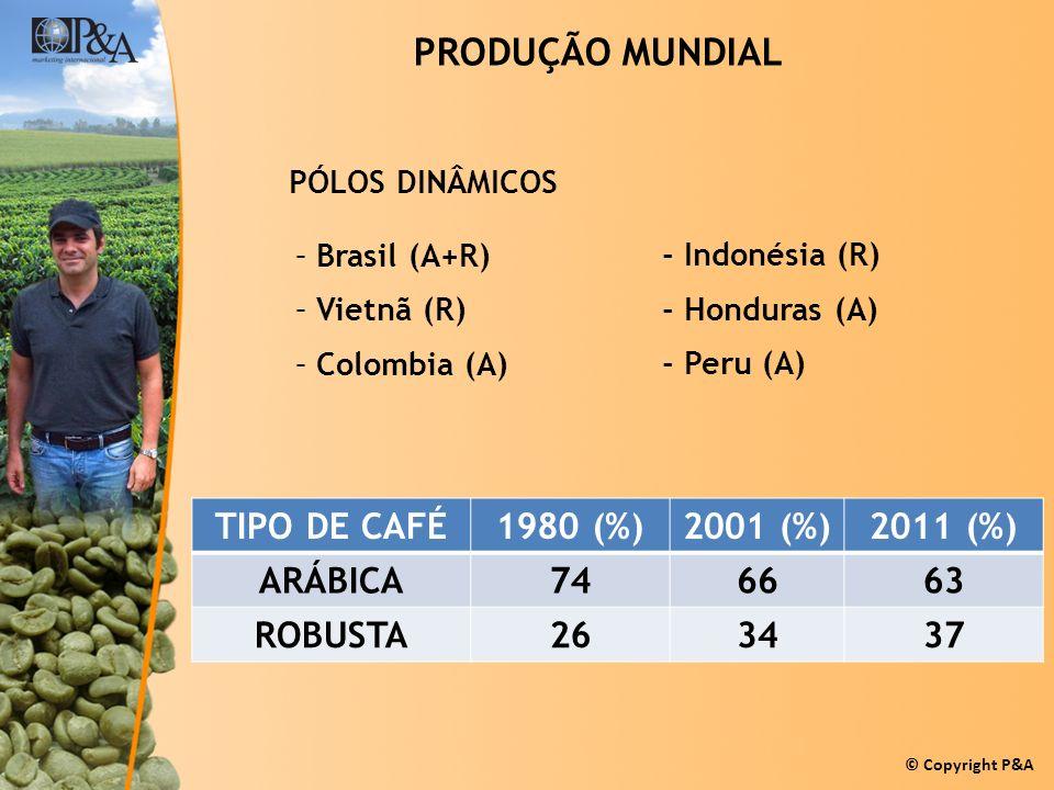 PRODUÇÃO MUNDIAL TIPO DE CAFÉ 1980 (%) 2001 (%) 2011 (%) ARÁBICA 74 66