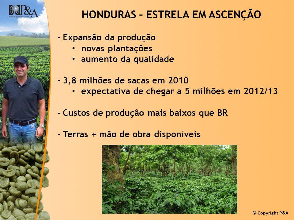 HONDURAS – ESTRELA EM ASCENÇÃO