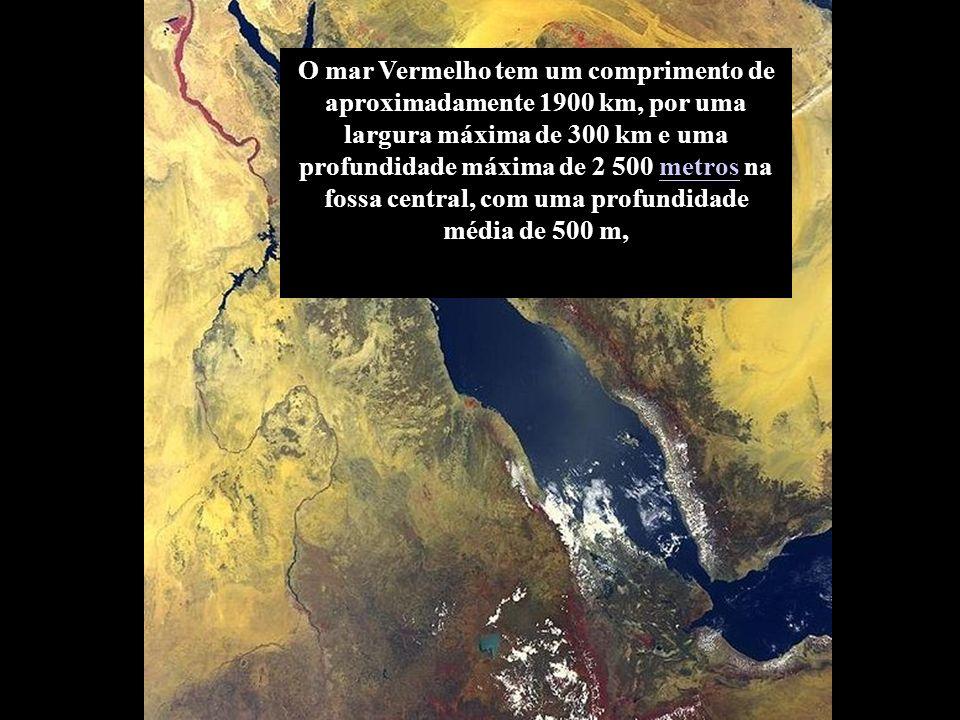 O mar Vermelho tem um comprimento de aproximadamente 1900 km, por uma largura máxima de 300 km e uma profundidade máxima de 2 500 metros na fossa central, com uma profundidade média de 500 m,
