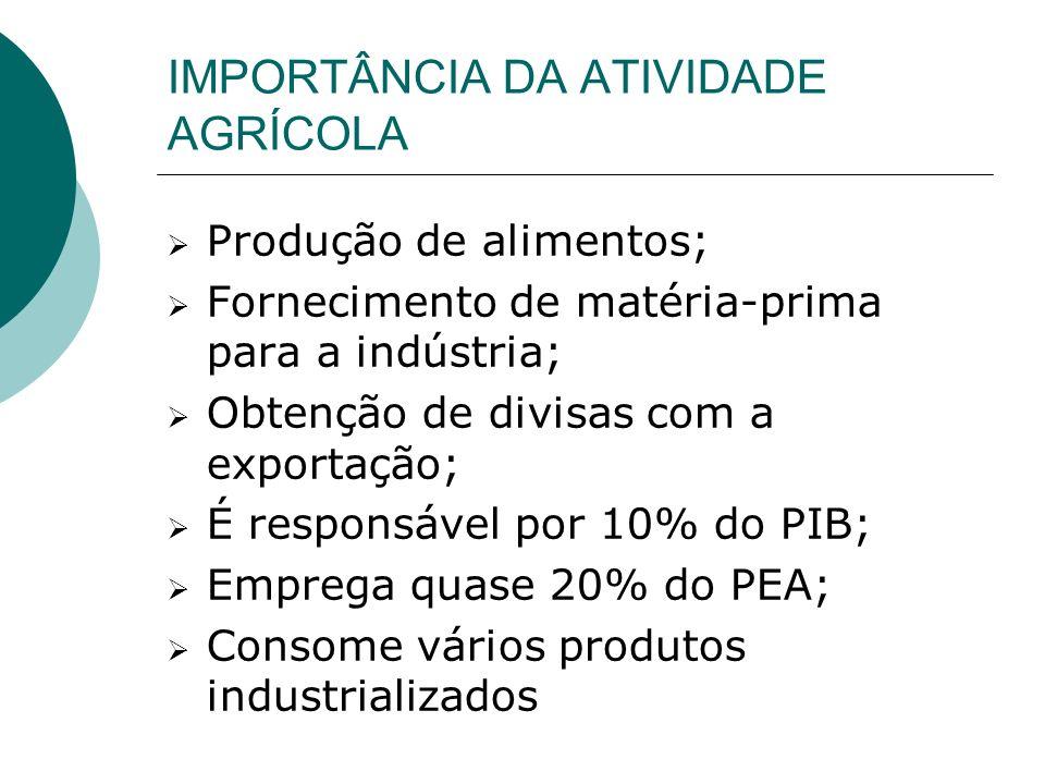 IMPORTÂNCIA DA ATIVIDADE AGRÍCOLA