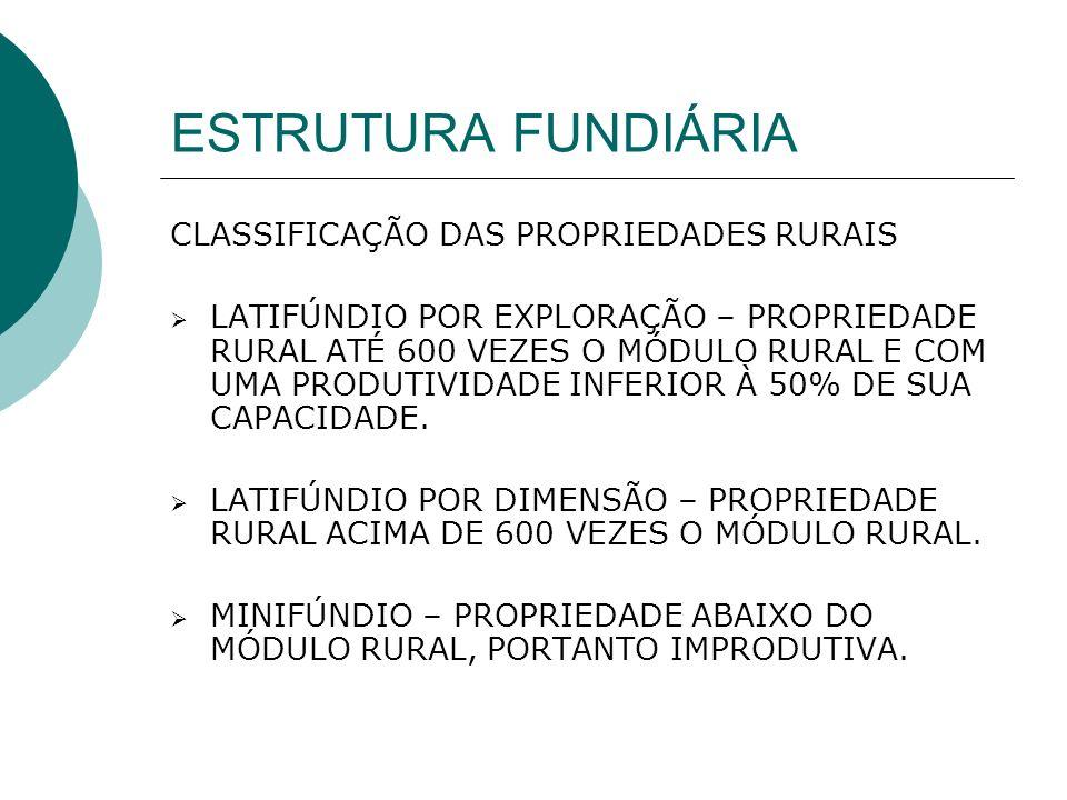 ESTRUTURA FUNDIÁRIA CLASSIFICAÇÃO DAS PROPRIEDADES RURAIS