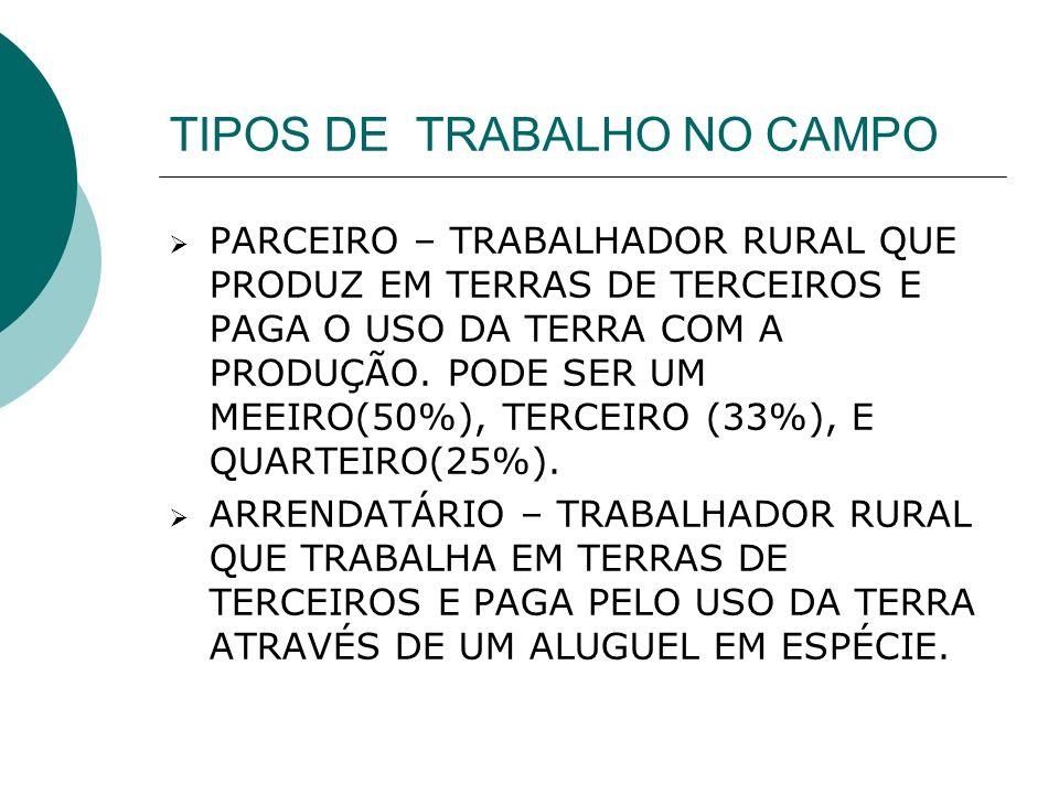 TIPOS DE TRABALHO NO CAMPO