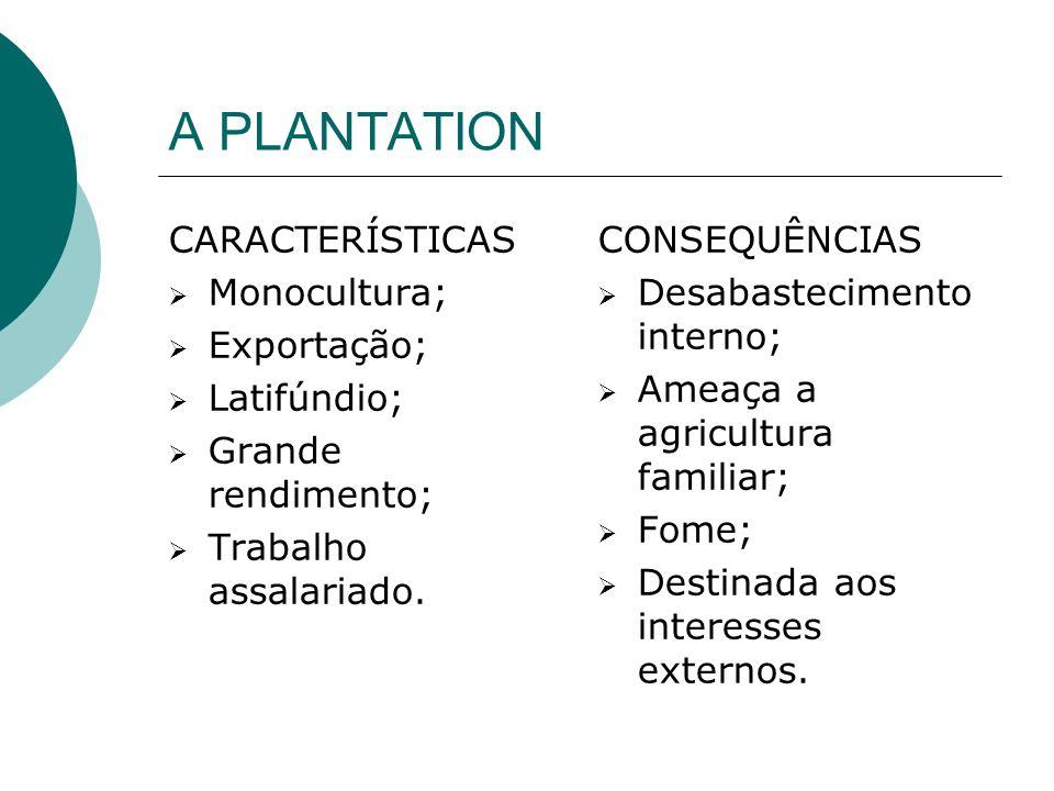 A PLANTATION CARACTERÍSTICAS Monocultura; Exportação; Latifúndio;