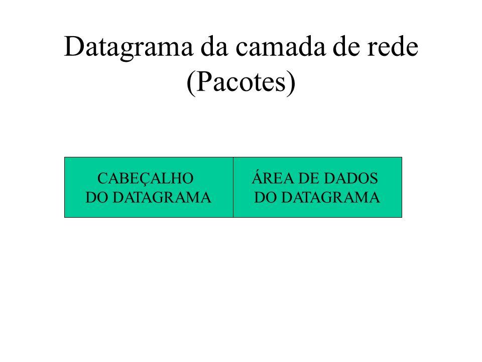 Datagrama da camada de rede (Pacotes)