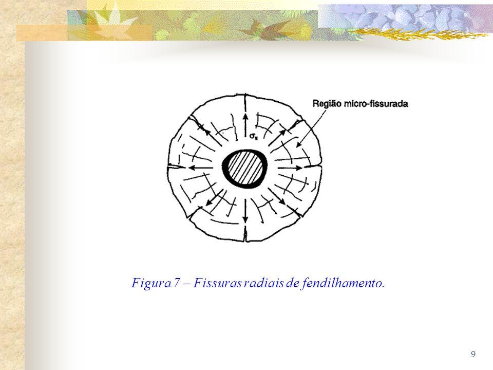Figura 7 – Fissuras radiais de fendilhamento.
