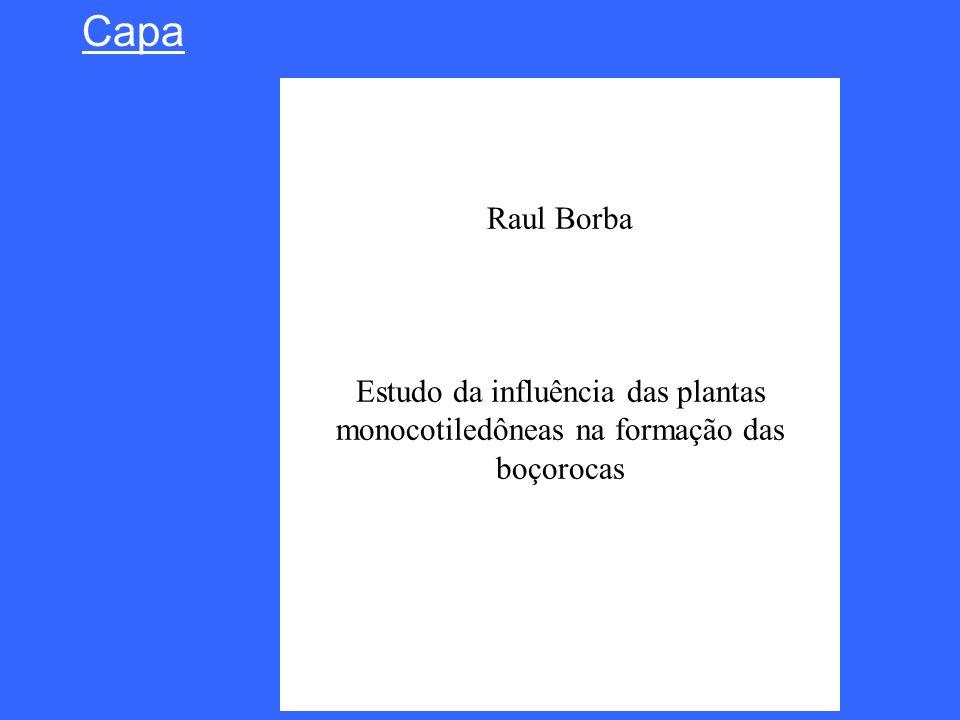 Capa Raul Borba Estudo da influência das plantas monocotiledôneas na formação das boçorocas