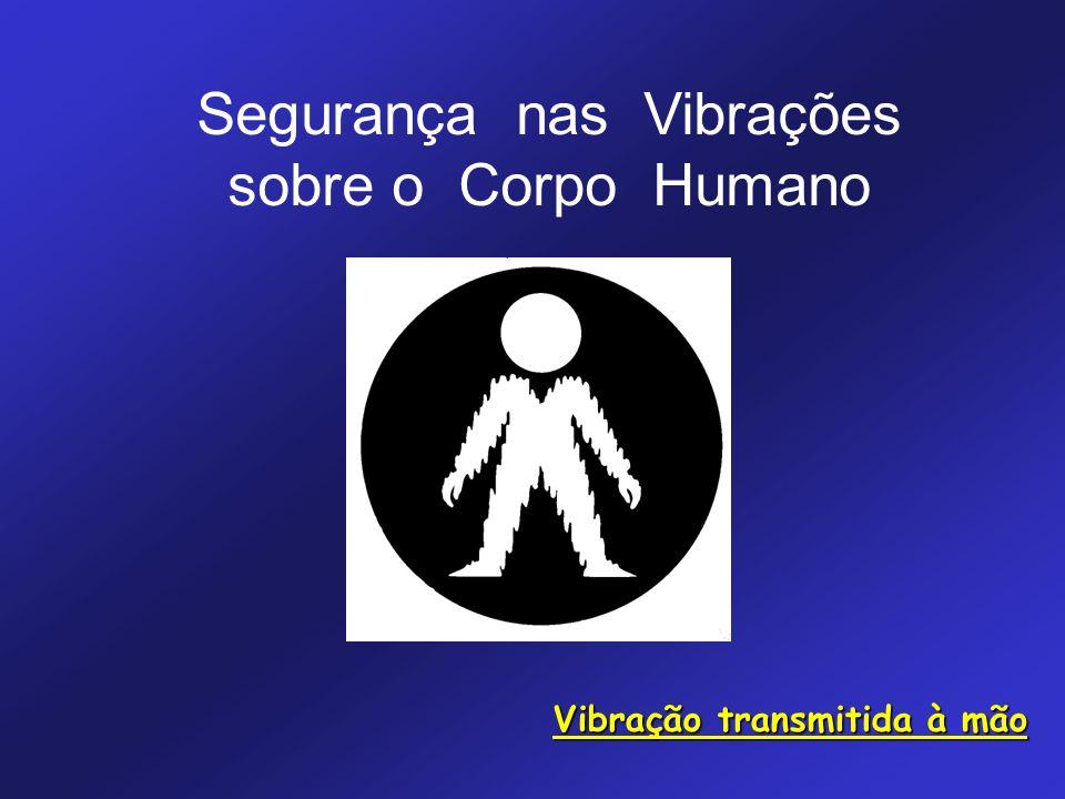 Segurança nas Vibrações sobre o Corpo Humano