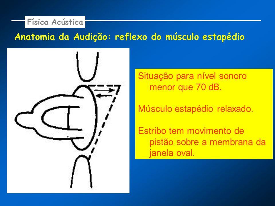 Anatomia da Audição: reflexo do músculo estapédio