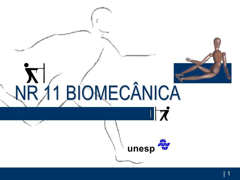 NR 11 BIOMECÂNICA | unesp Franciane Falcão | ano 2005