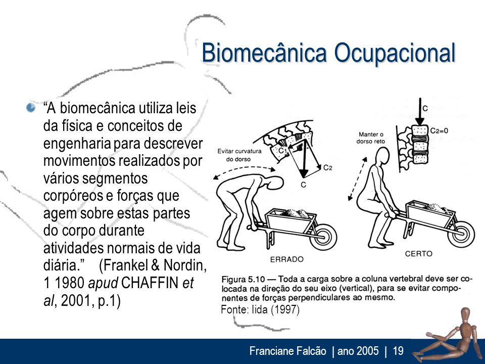 Biomecânica Ocupacional