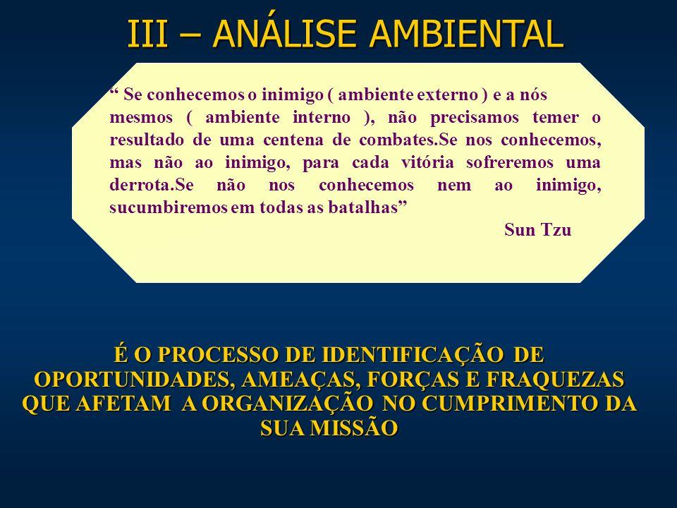 III – ANÁLISE AMBIENTAL