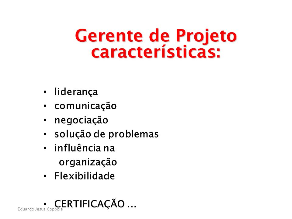 Gerente de Projeto características: