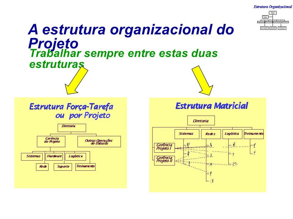 A estrutura organizacional do Projeto