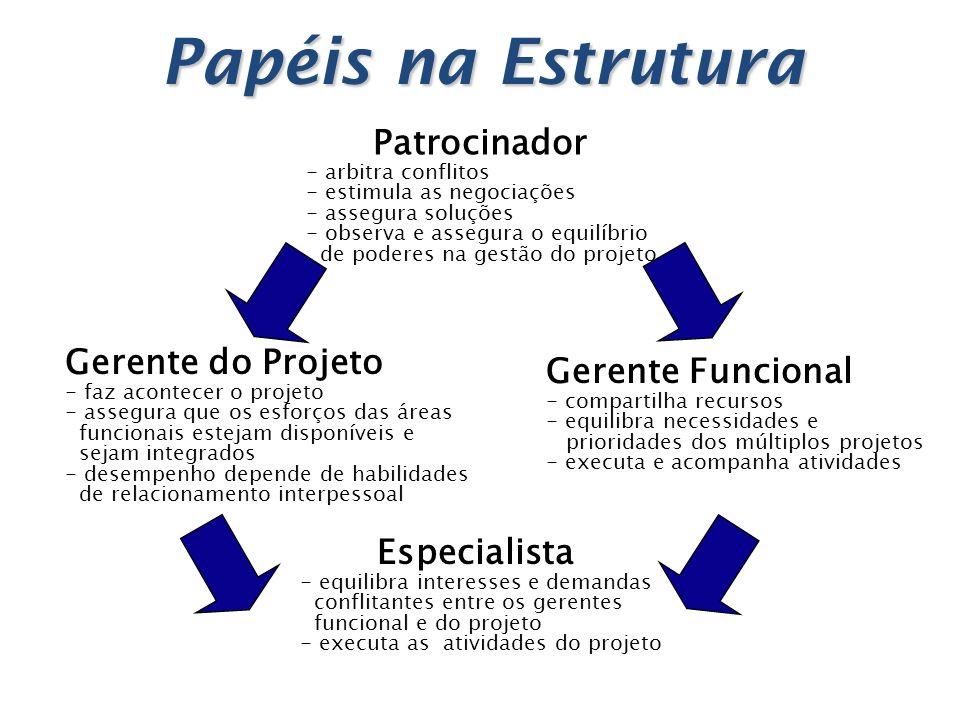 Papéis na Estrutura Patrocinador Gerente do Projeto Gerente Funcional