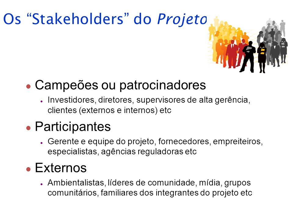 Os Stakeholders do Projeto
