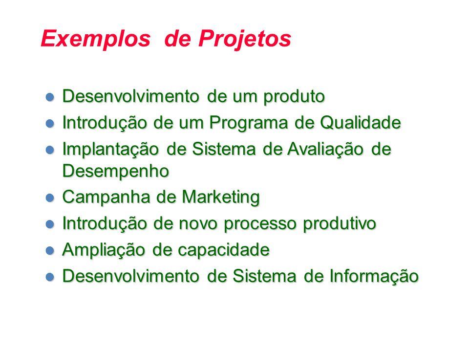 Exemplos de Projetos Desenvolvimento de um produto