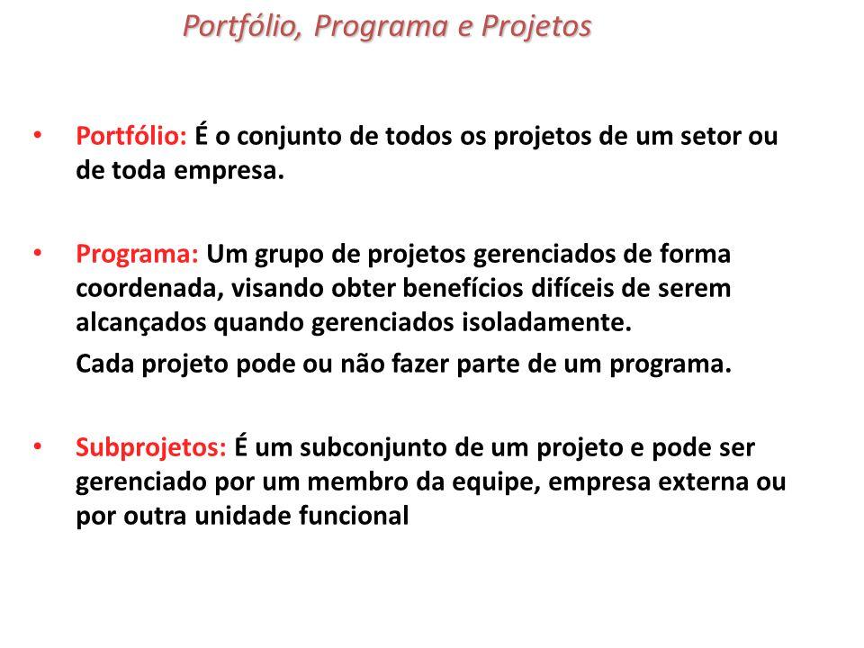 Portfólio, Programa e Projetos