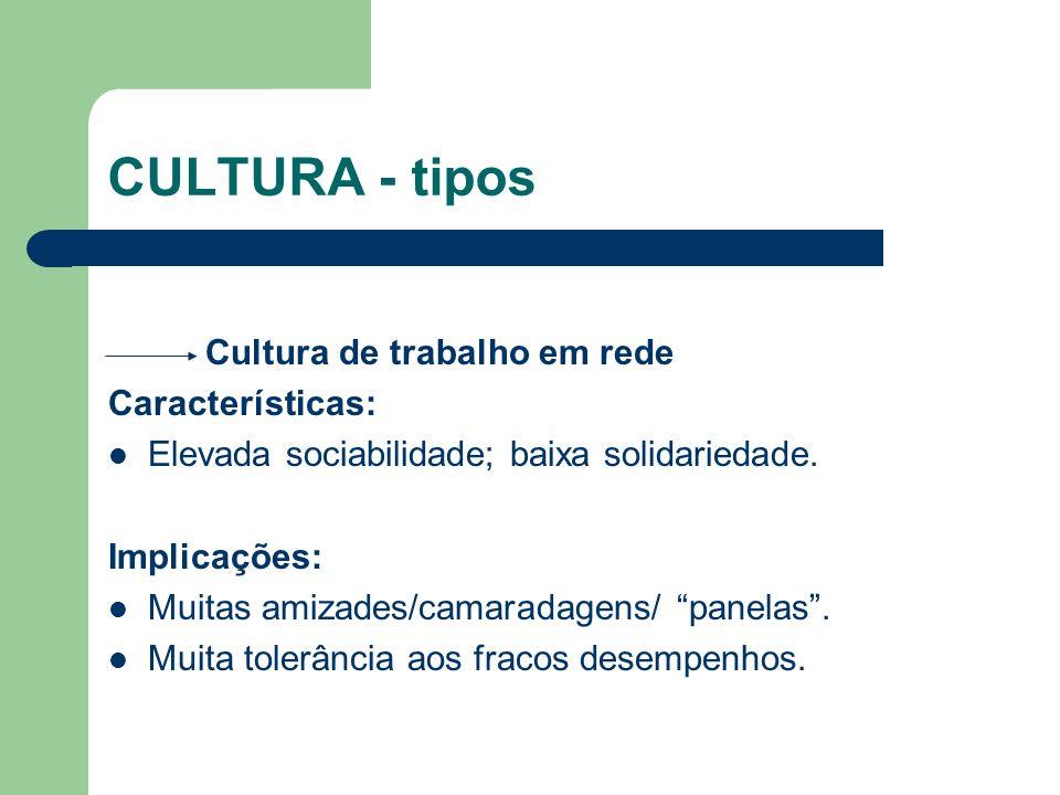 CULTURA - tipos Cultura de trabalho em rede Características: