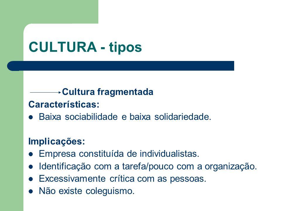 CULTURA - tipos Cultura fragmentada Características: