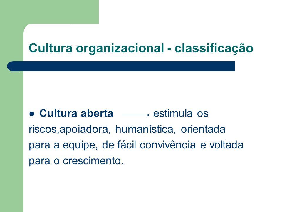 Cultura organizacional - classificação