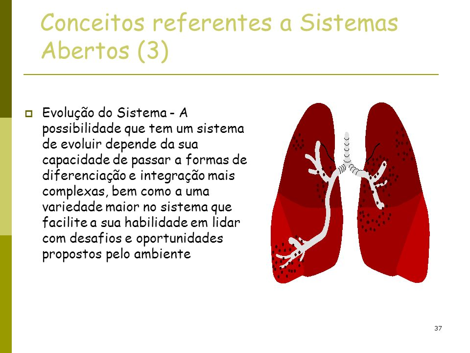 Conceitos referentes a Sistemas Abertos (3)