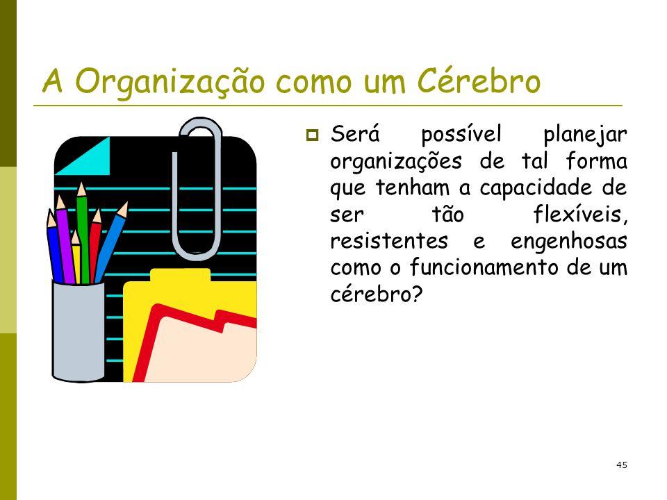 A Organização como um Cérebro