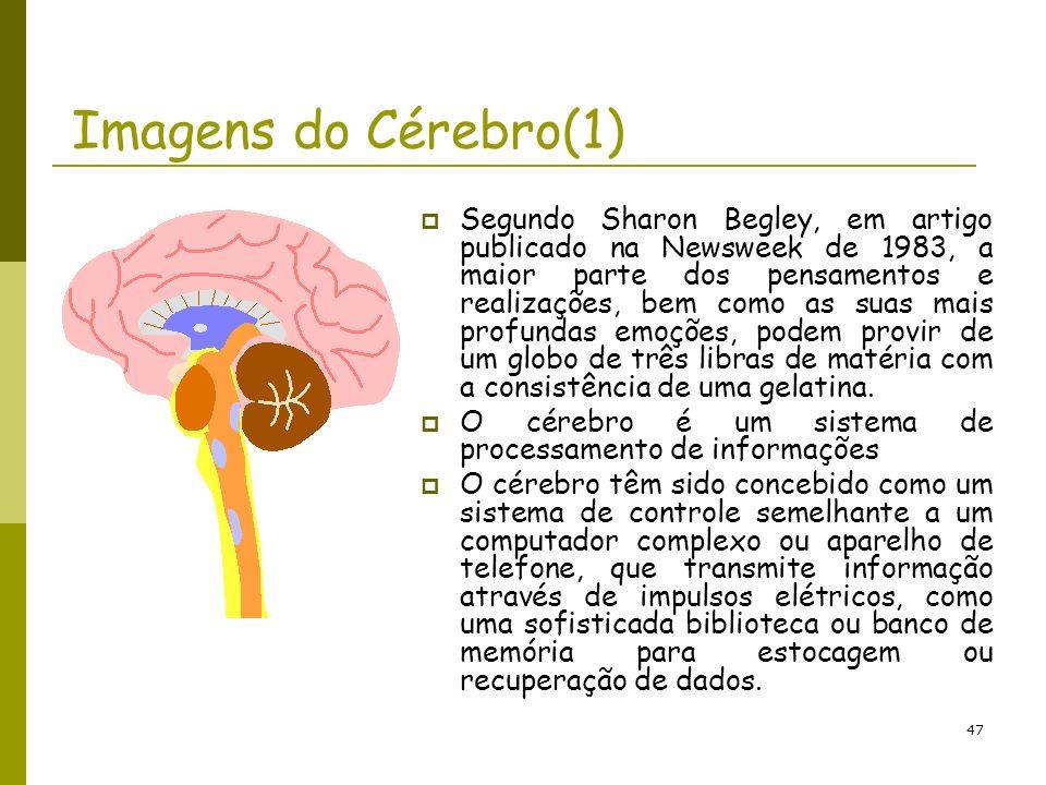 Imagens do Cérebro(1)