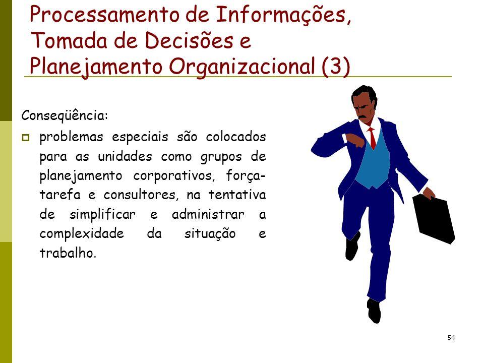 Processamento de Informações, Tomada de Decisões e Planejamento Organizacional (3)