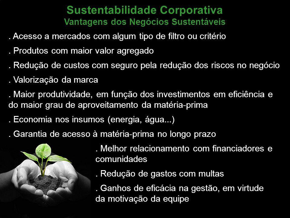 Sustentabilidade Corporativa Vantagens dos Negócios Sustentáveis