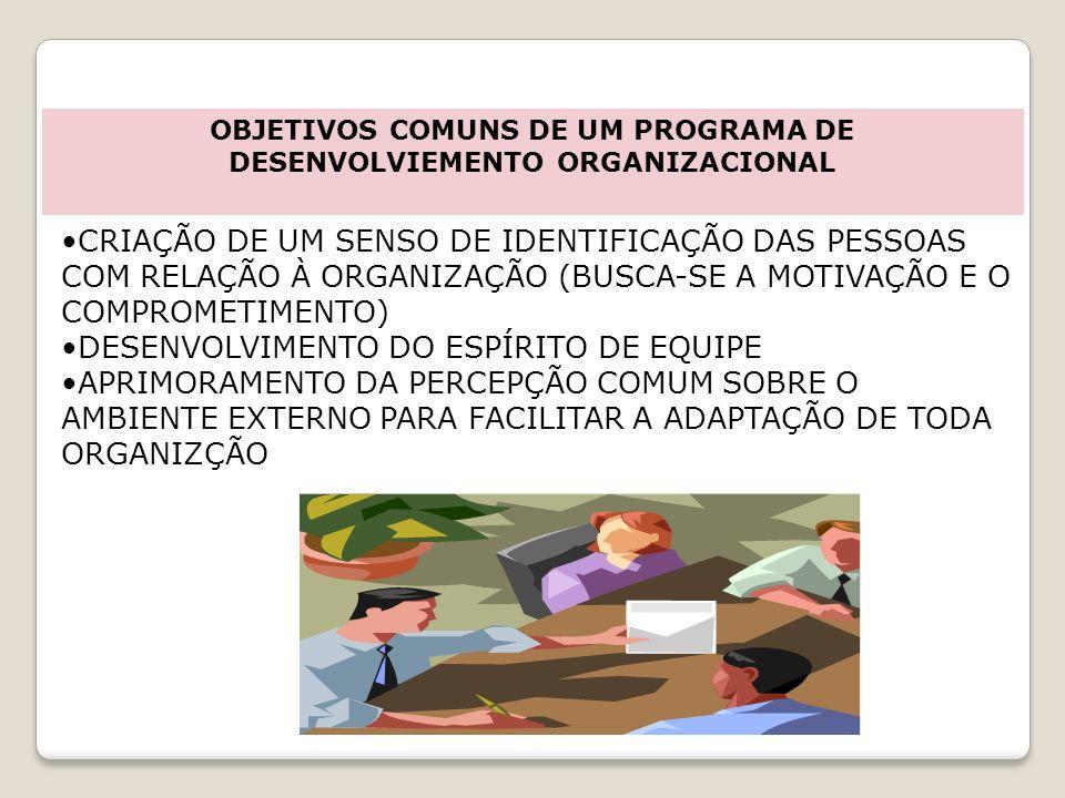 OBJETIVOS COMUNS DE UM PROGRAMA DE DESENVOLVIEMENTO ORGANIZACIONAL