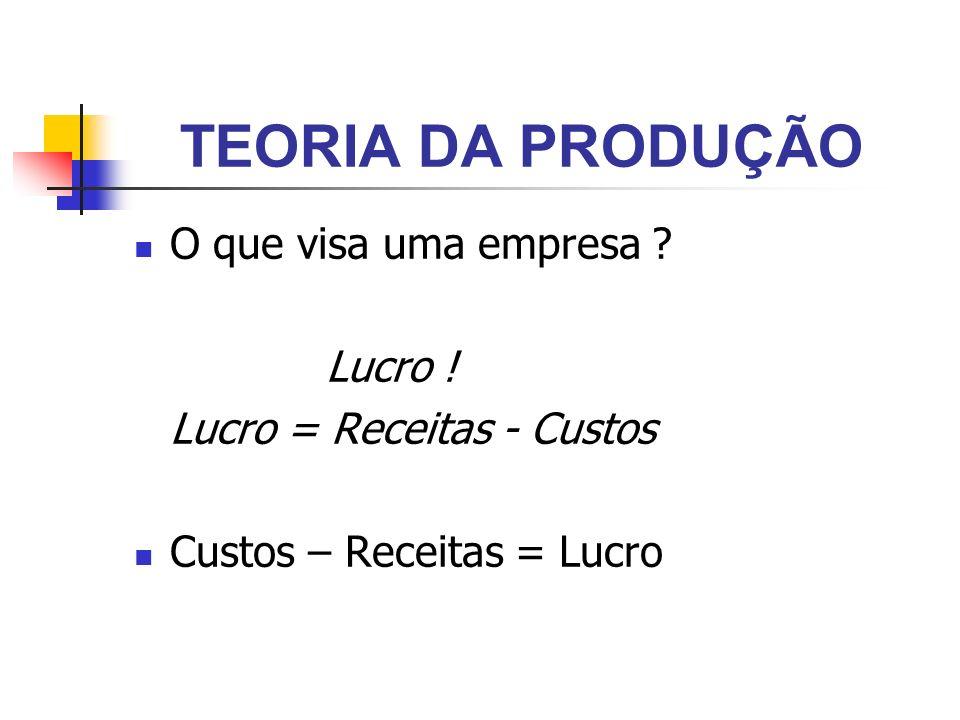 TEORIA DA PRODUÇÃO O que visa uma empresa Lucro !