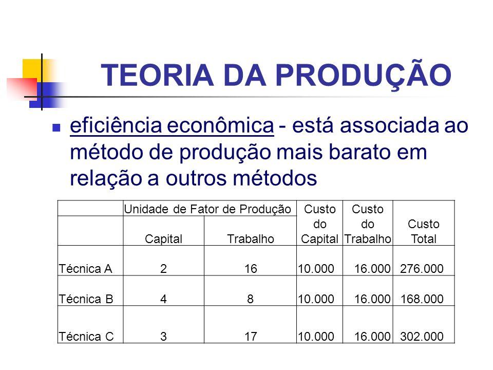 TEORIA DA PRODUÇÃO eficiência econômica - está associada ao método de produção mais barato em relação a outros métodos.