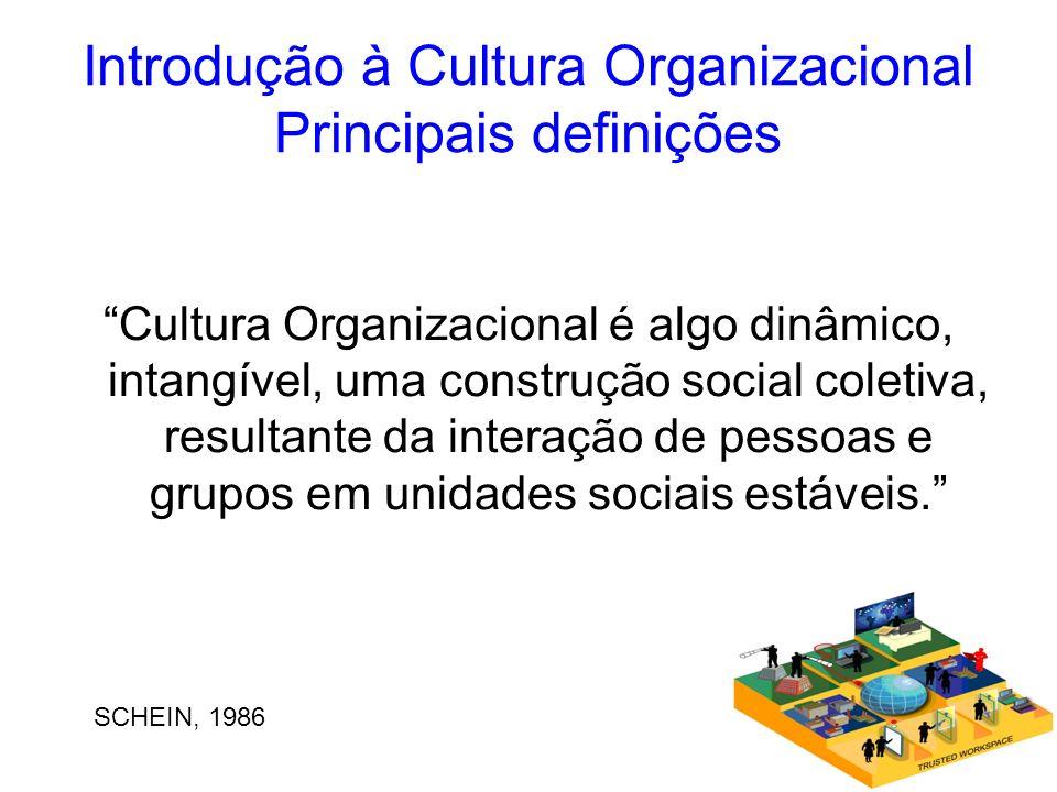 Introdução à Cultura Organizacional Principais definições