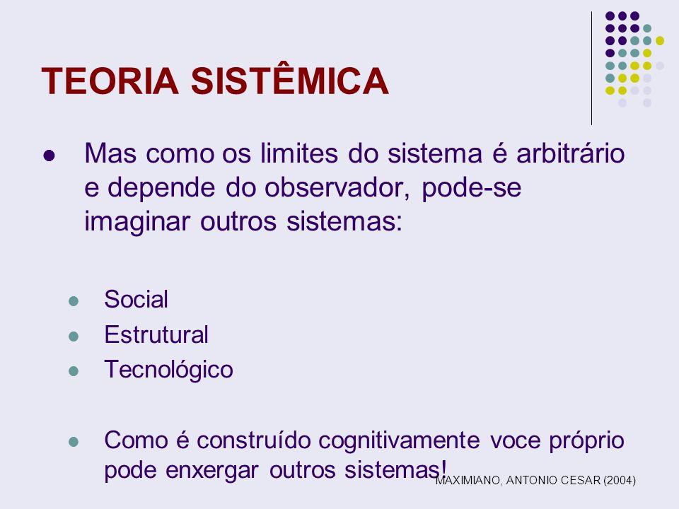 TEORIA SISTÊMICA Mas como os limites do sistema é arbitrário e depende do observador, pode-se imaginar outros sistemas: