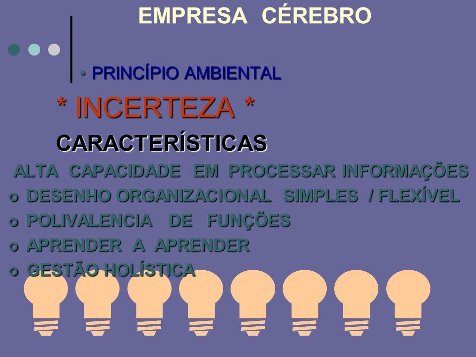 EMPRESA CÉREBRO * INCERTEZA * PRINCÍPIO AMBIENTAL CARACTERÍSTICAS