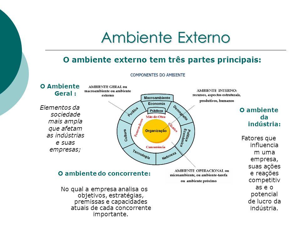 Ambiente Externo O ambiente externo tem três partes principais: