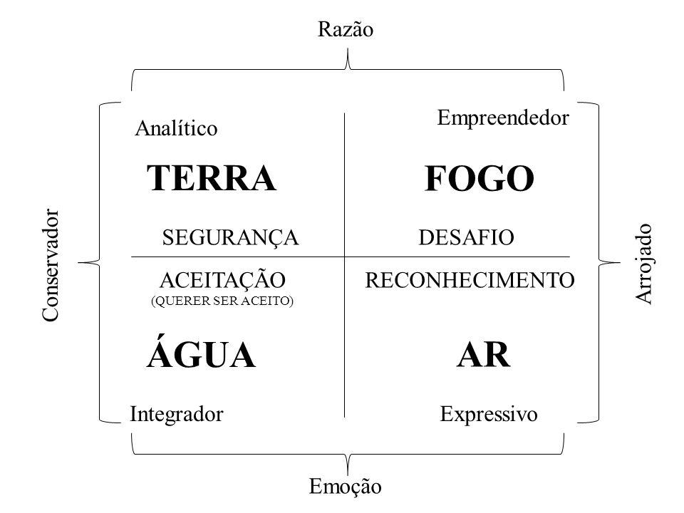 TERRA FOGO ÁGUA AR Razão Empreendedor Analítico SEGURANÇA DESAFIO