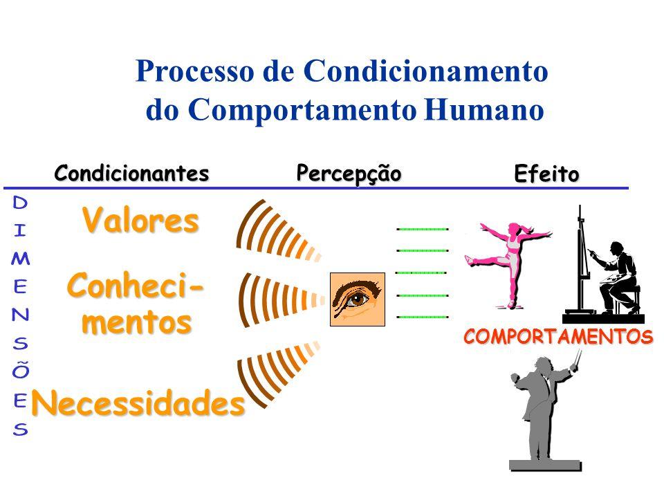 Processo de Condicionamento do Comportamento Humano