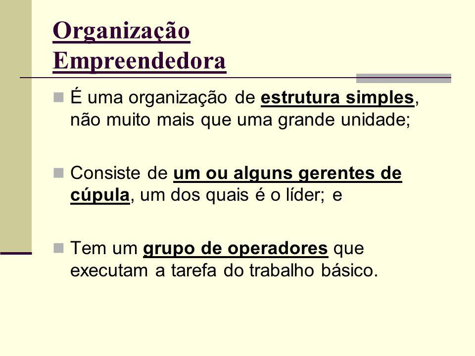 Organização Empreendedora