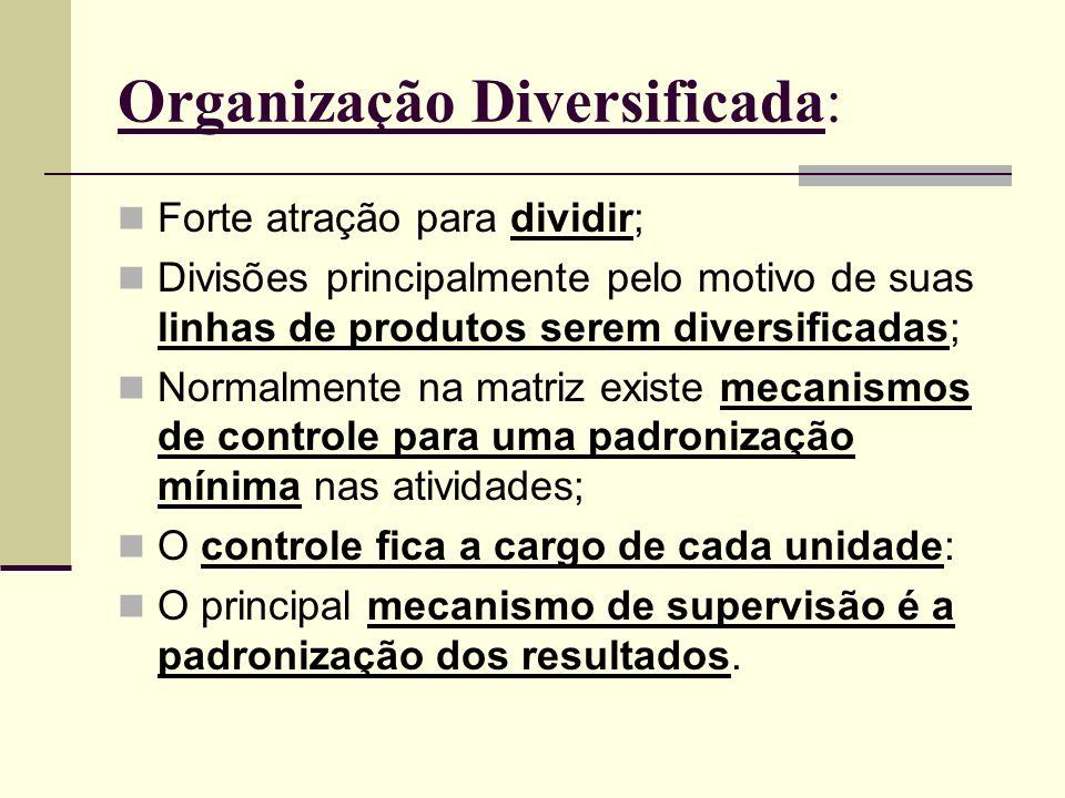 Organização Diversificada: