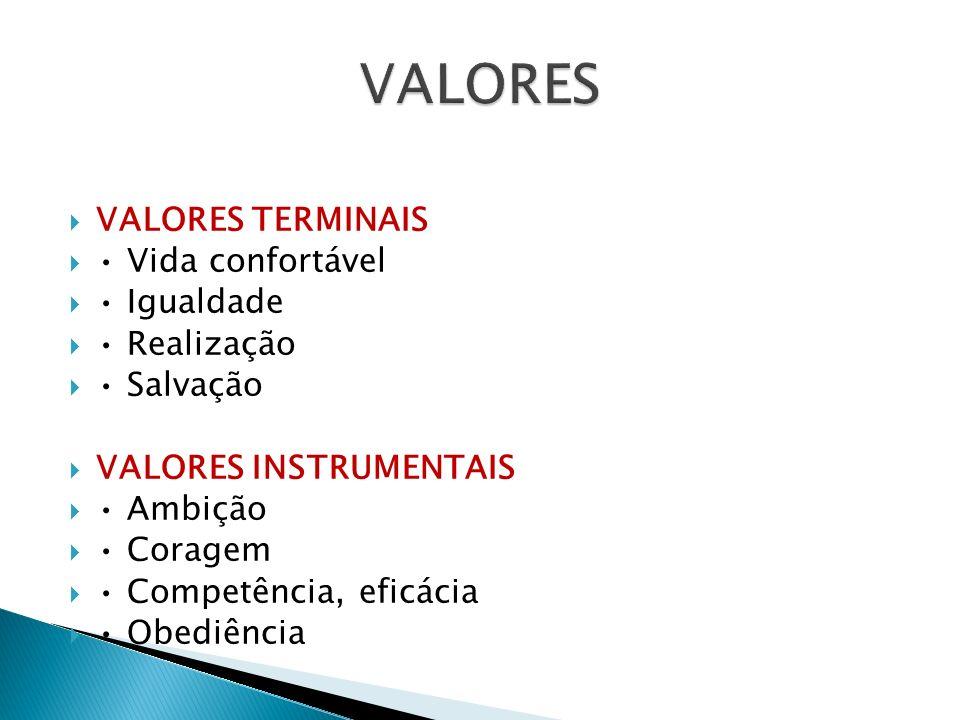 VALORES VALORES TERMINAIS • Vida confortável • Igualdade • Realização
