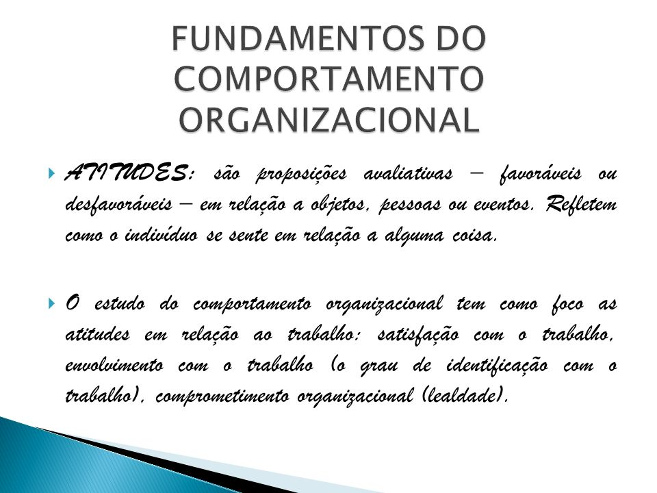 FUNDAMENTOS DO COMPORTAMENTO ORGANIZACIONAL