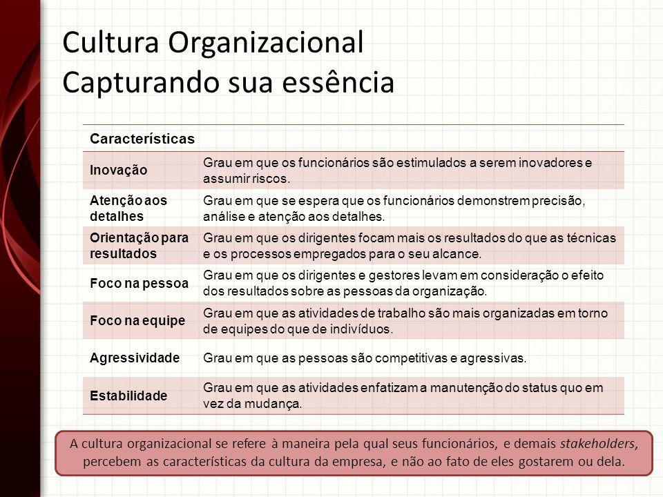 Cultura Organizacional Capturando sua essência