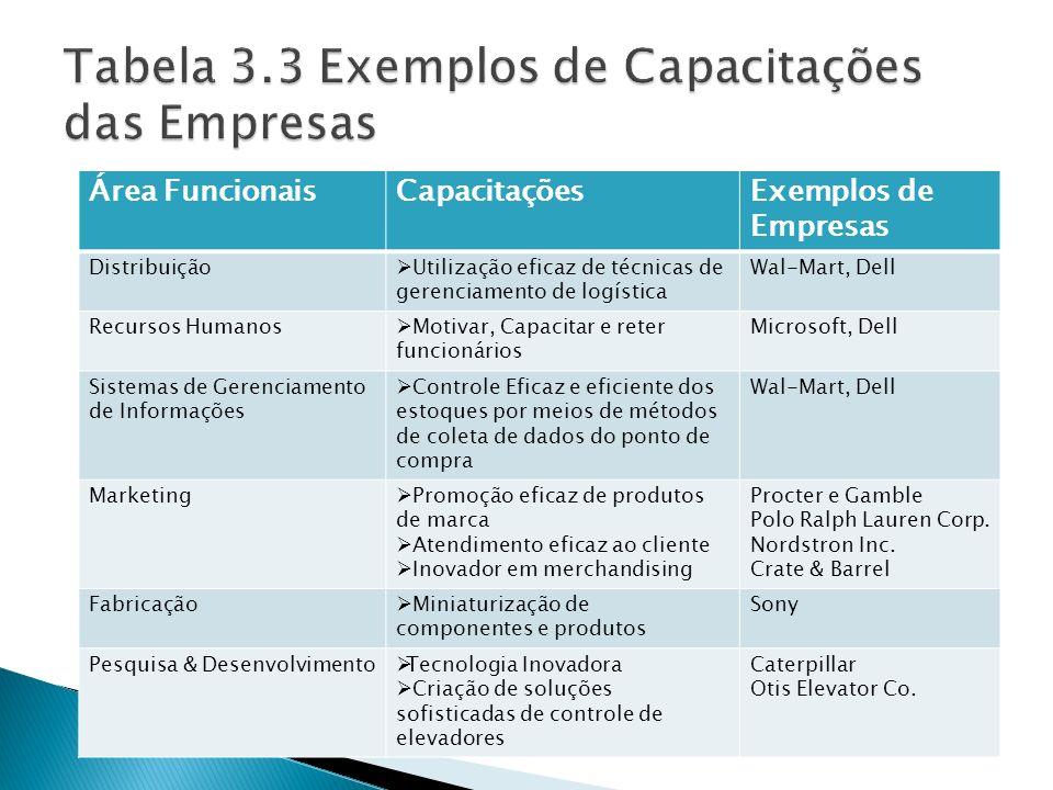 Tabela 3.3 Exemplos de Capacitações das Empresas