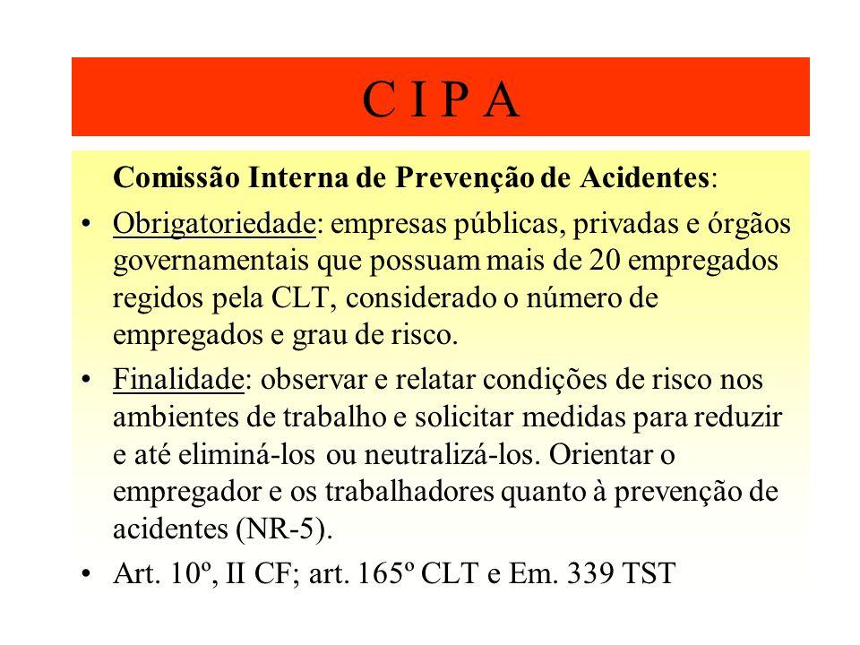 C I P A Comissão Interna de Prevenção de Acidentes: